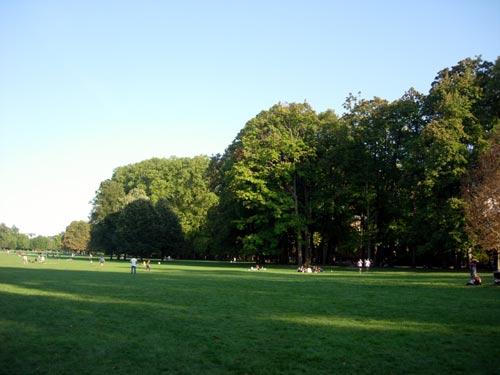 Grands arbres du Parc de la Tête d'Or