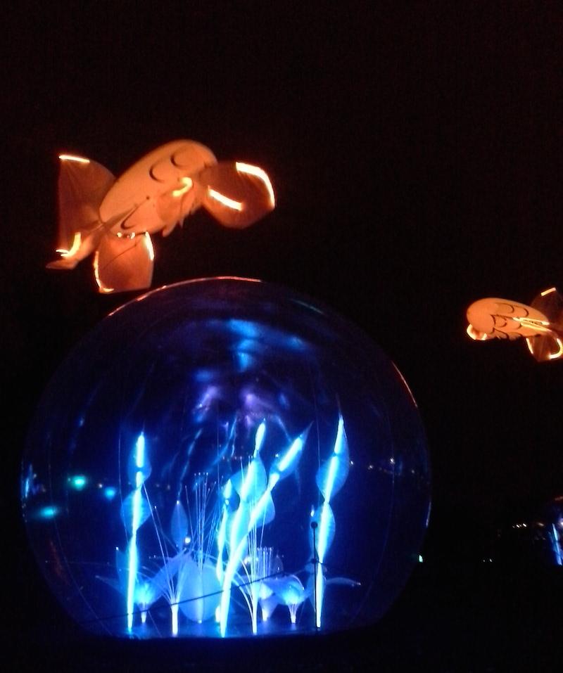 Parc tête d'or - Christophe Martine - Fête lumières 2014