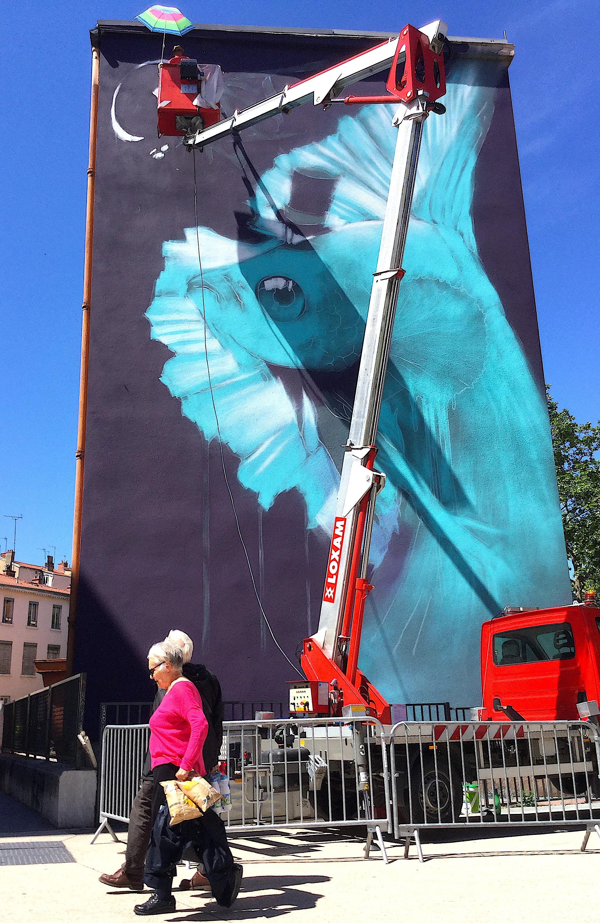 Fresque de Mur69, composée en 2017 par Kalouf, place des Tapis, photo du 16 mai 2017