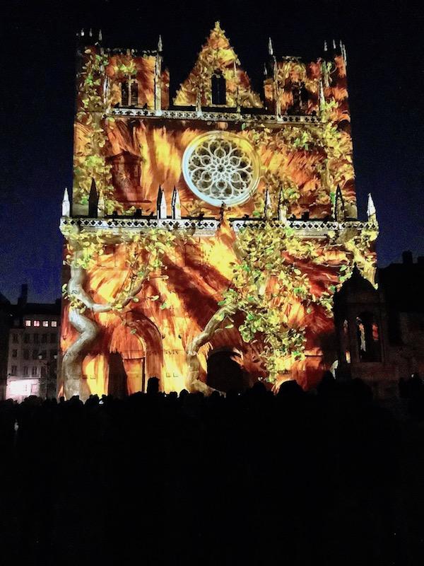 Cathédrale Saint-Jean, fête des lumières 2019
